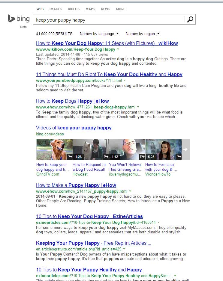 bing Search Engine results